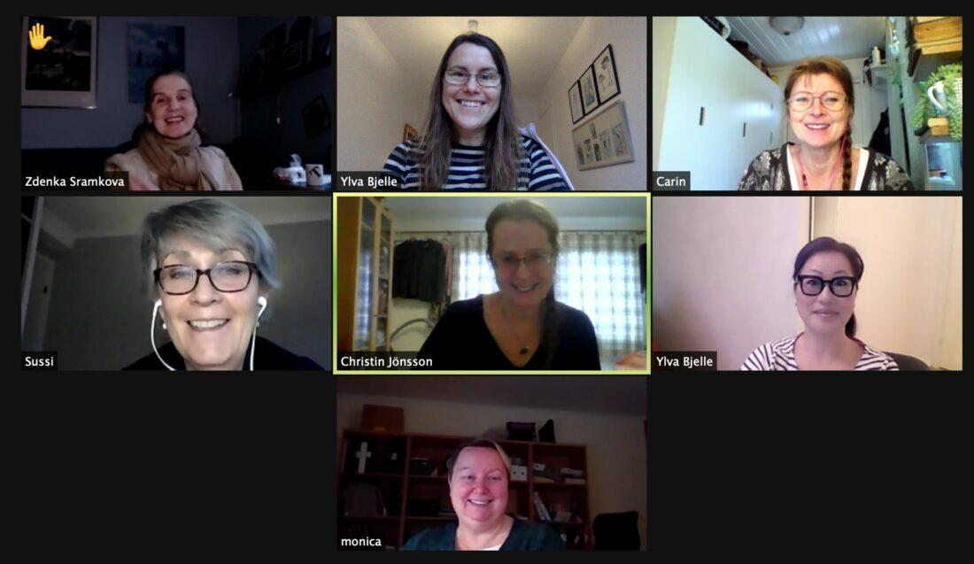 sju personer deltar i ett digitalt möte. De syns i sju av nio rutor i verktyget Zoom.